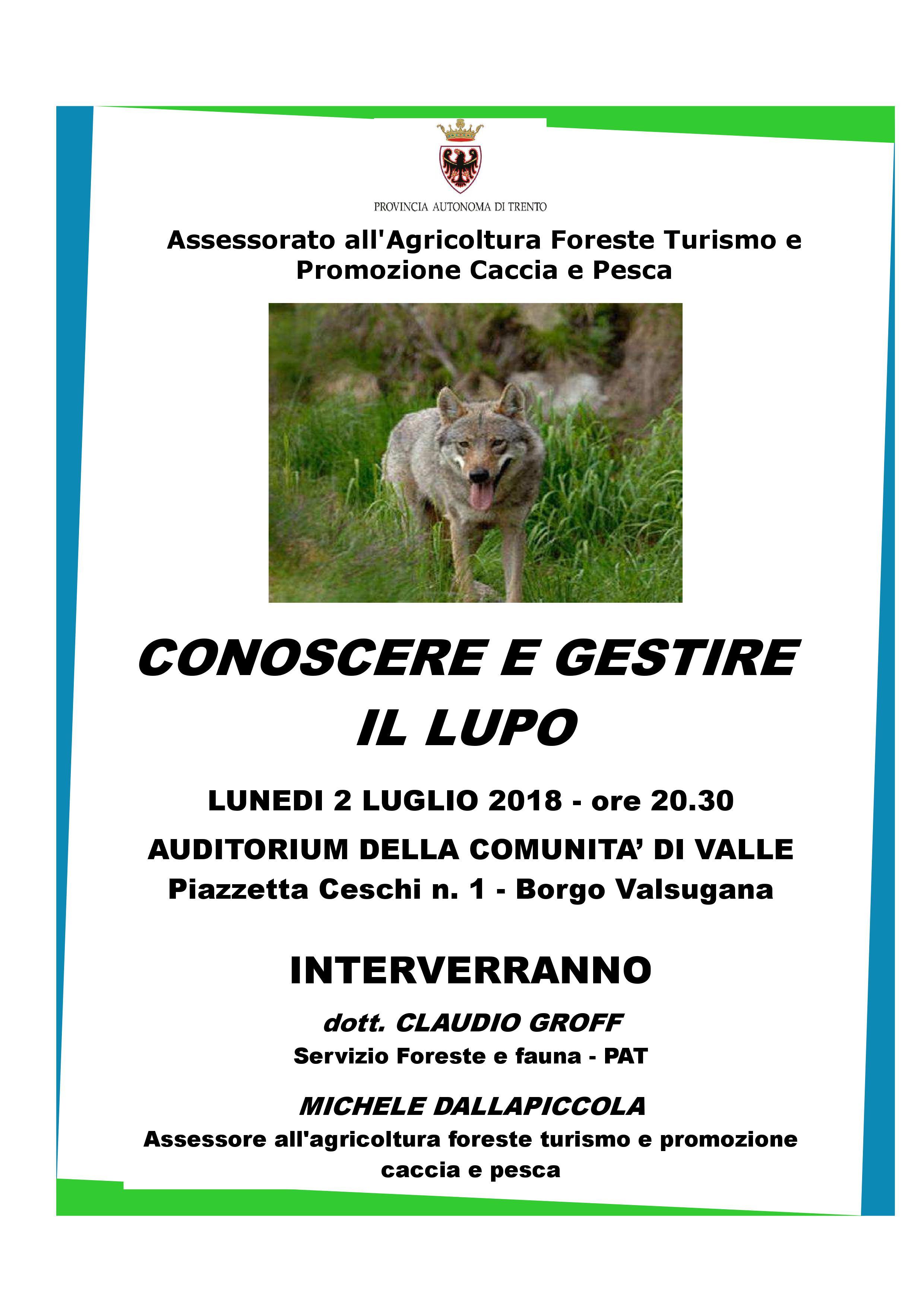 Lupo-in-Trentino-Borgo