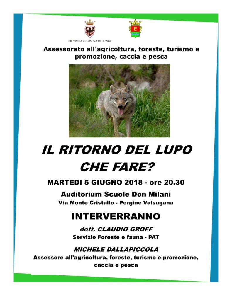 Lupo in Trentino Pergine