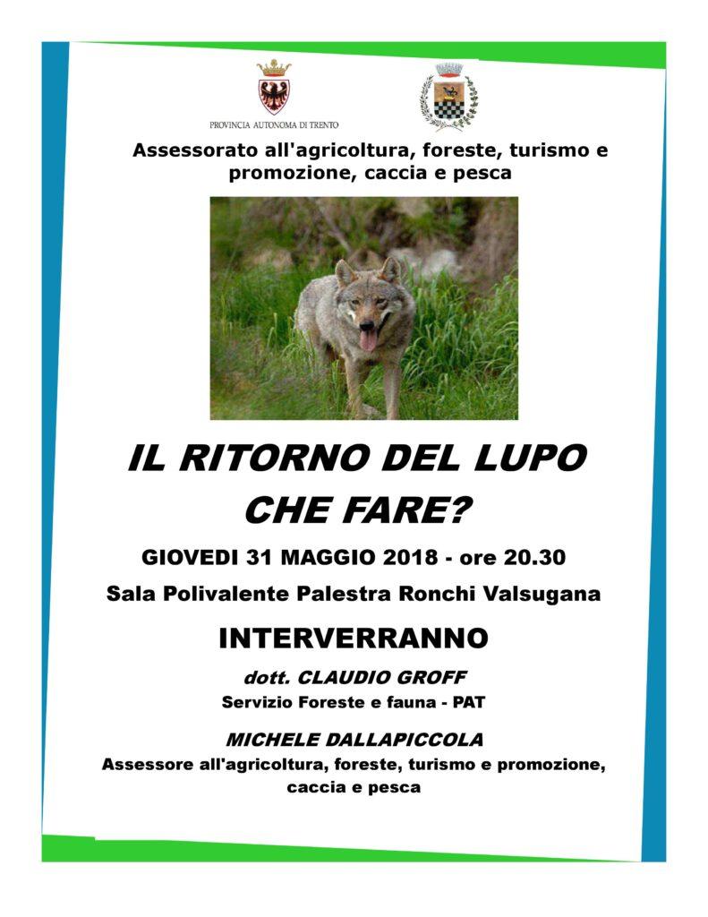 Lupo in Trentino Ronchi