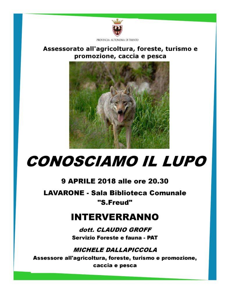 Lupo_in_Trentino_Lavarone